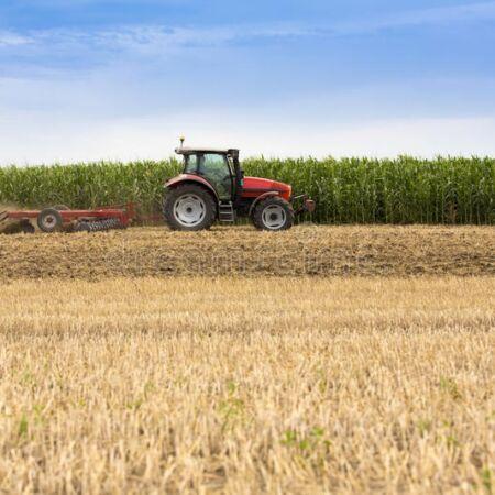 Як отримати у власність землю сільськогосподарського призначення