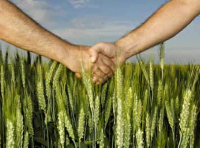 Розірвання договору оренди земель сільськогосподарського призначення